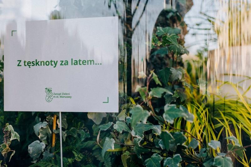 zielone słupy
